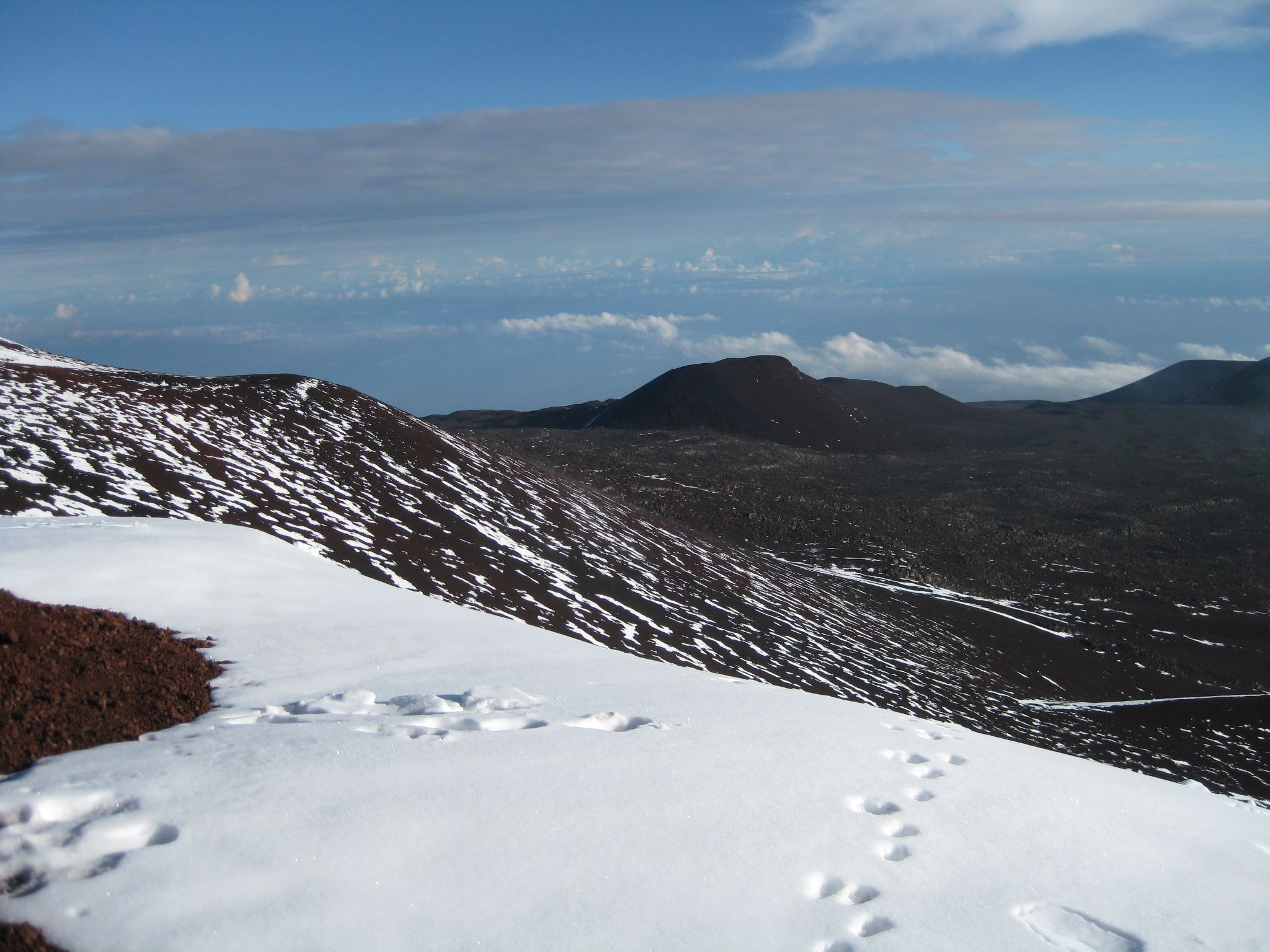 Action Alert: Help Us to Oppose Office of Mauna Kea Management Proposed Rules